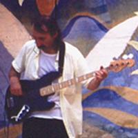 Fabio De Marc - bassista (Trio Elettrico)