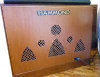 l'Hammond A 100:fronte disegnato, tagliato e installato da me stesso