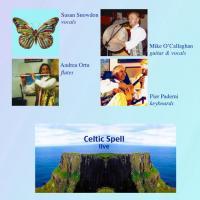 Pier Paderni - Celtic spell live in Novara
