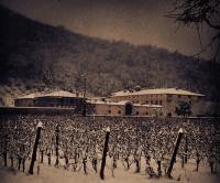 Provezze, Villa Soncini… in quegli anni d'inverno all'organo si gelava