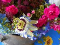 Pier Paderni - fiori sul tavolo