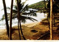 Anjuna Beach (Goa)